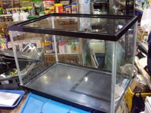 ガラス水槽(45センチ)【1,580円/税込】