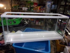ガラス水槽(60センチ)【980円/税込】